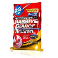 Massive gainer professional - 2,8 kg