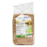 Spelled grain - 500g