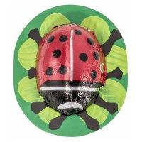 Chocolate ladybugs rapunzel - 800g