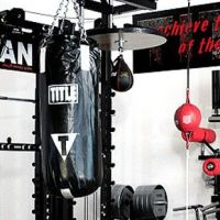 Titan T1 - Option DAN (Martial Arts)- Buy Online at MOREmuscle