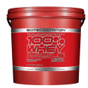 100% Whey Protein Professional LS - 5kg [Scitec Nutrition]