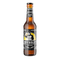 Protein Beer Alcohol Free - 330ml - X-Up