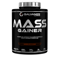 Mass Gainer - 3000g [Galvanize Nutrition]