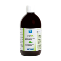 Ergysil - 500ml - Laboratorios Nutergia