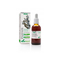Extracto de Fucus - 50ml [Soria Natural]