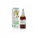 Extracto de Vara de Oro - 50ml [Soria Natural]