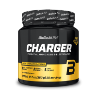 Ulisses Charger - 360g
