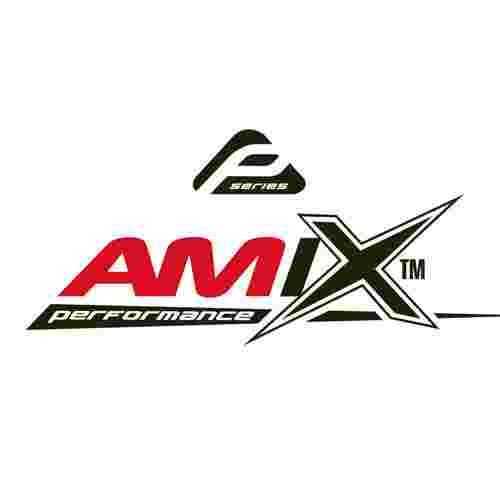 Logo Amix Performance